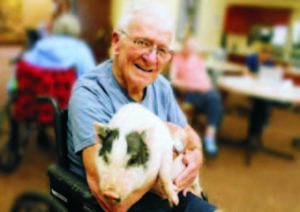 Animal Therapy for Seniors